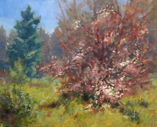 Apple Tree, Fir 16x20 oil by Michael Chesley Johnson