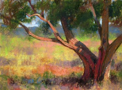 High Desert Juniper 12x18 pastel by Michael Chesley Johnson