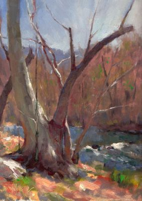 Secret Sycamore 12x9 Oil by Michael Chesley Johnson