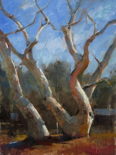 Group Portrait: Sycamores 12x9 oil by Michael Chesley Johnson