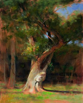 Twisted Cottonwood 20x16 Oil by Michael Chesley Johnson