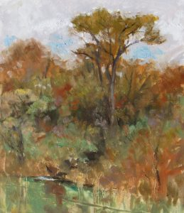 Towering Cottonwood 12x9 Oil on Paper by Michael Chesley Johnson